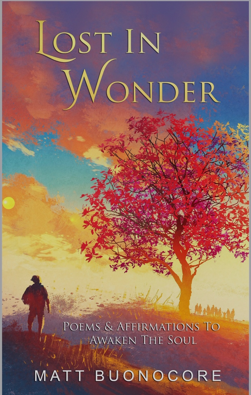 book review of lost in wonder