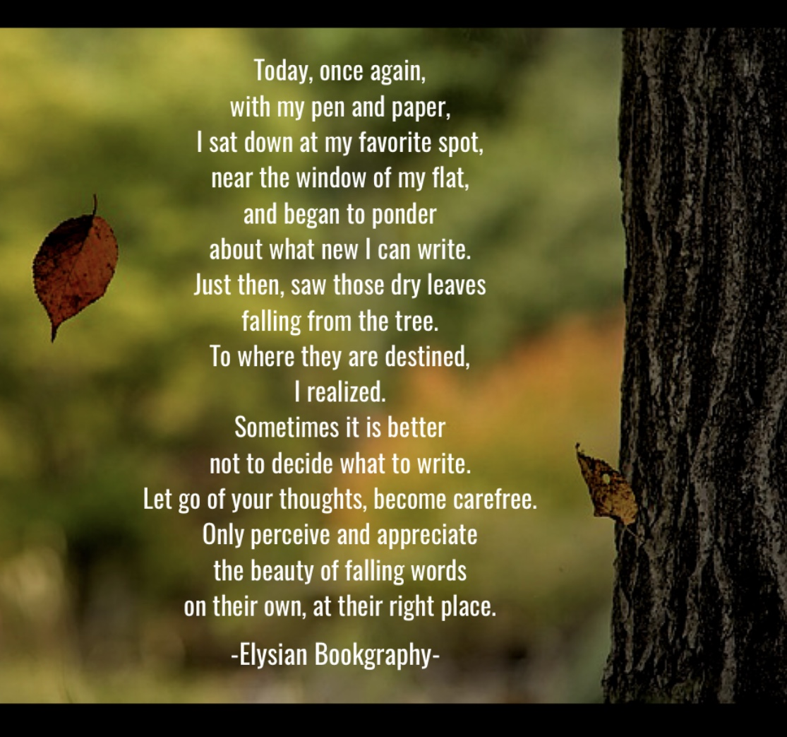 Cover Pic of Unplanned Poem by Elysian Bookgraphy