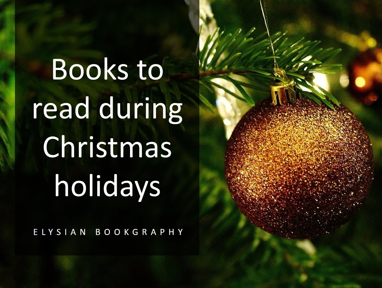Cover Pic of Books to read during Christmas Holidays